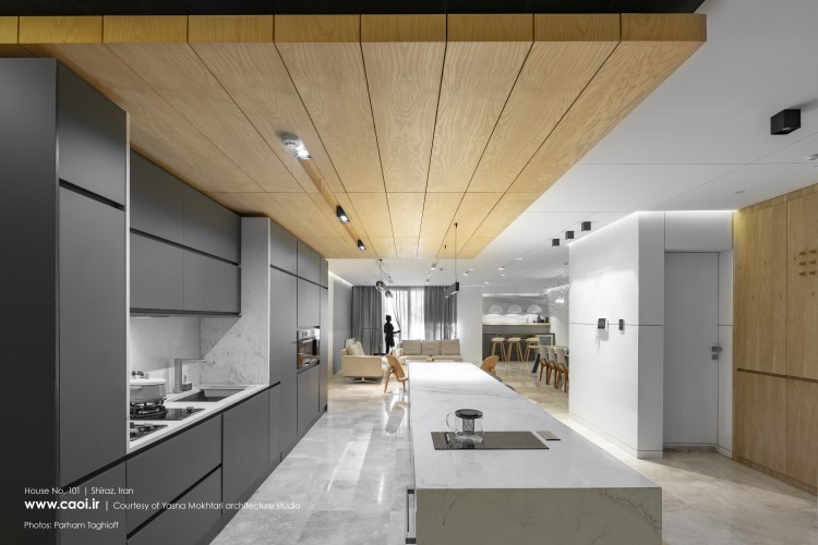 House No 101 Shiraz by Yasna Mokhtari Architecture Studio   1